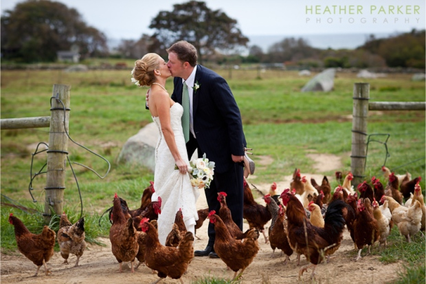 allen-farm-wedding-photographer-photo-by-heather-parker-photography