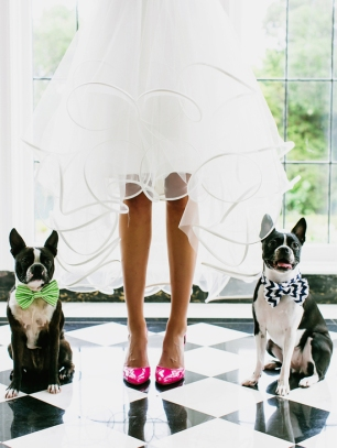 bride-poses-in-bright-pink-heels-with-dogs-at-her-side-medium_large-via-one-wed