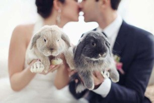 rabbits-photo-by-sonya-khegay-photography-via-ruffled